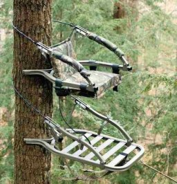 tree-stand-safety